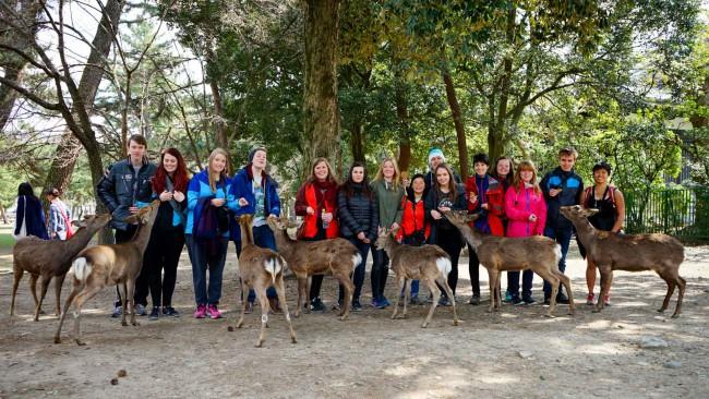 Klassebilde sammen med rådyrene i Nara.