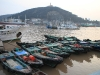 fishing-boats in the Putuo-harbour