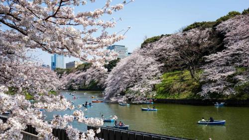 Studietur2015 - Tokyo
